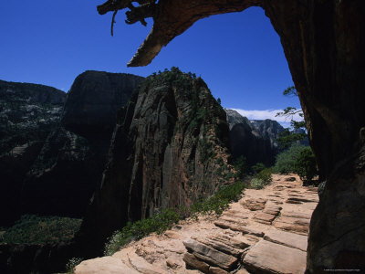Angel's Landing Hike, Zion National Park, Utah Photographic Print by Stacy Gold