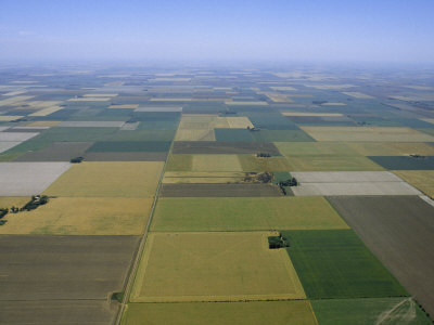 Aerial of Agricultural Fields Photographic Print by James P. Blair