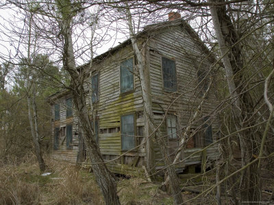 Abandoned, Overgrown House Photographic Print by David Evans