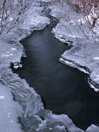 Rufous Creek Freeze Up, Alaska Photographic Print by Michael S. Quinton