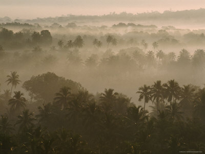 Early Morn Fog Lies over Old Goa Landscape, India Photographic Print by James L. Stanfield