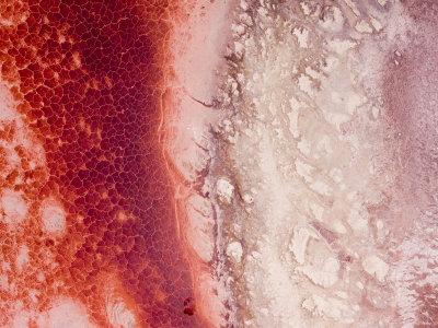 Pink Alkaline Salt Crust in Tanzania's Lake Natron Photographic Print by Michael Fay