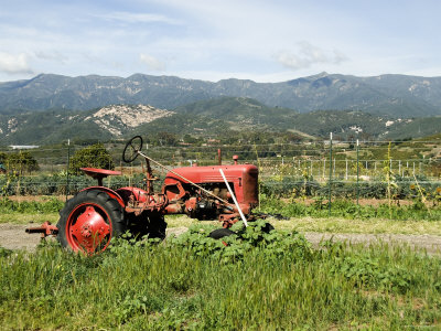Red Tractor on Farm with Mountains in the Background, California Fotografisk tryk