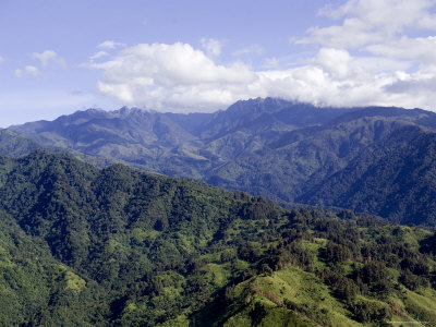 The Peaks of the Rwenzori Mountains, Uganda Photographic Print by Michael Fay