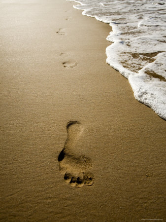 Waves About to Wash over Footprints in the Sand, Anaho Bay, French Polynesia Photographic Print by Tim Laman