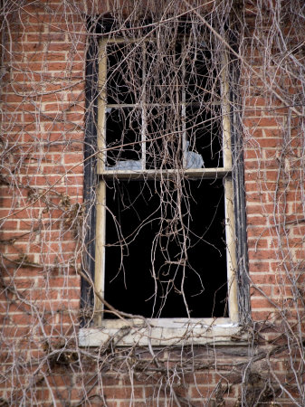 Time Hangs Heavy on the Window of an Abandoned Building Photographic Print by Stephen St. John