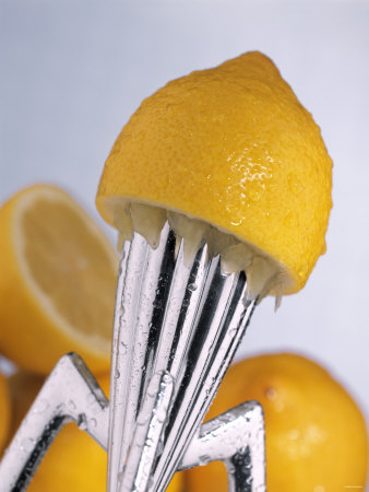 Lemon Half on Metal Juicer Photographic Print by Alexander Feig