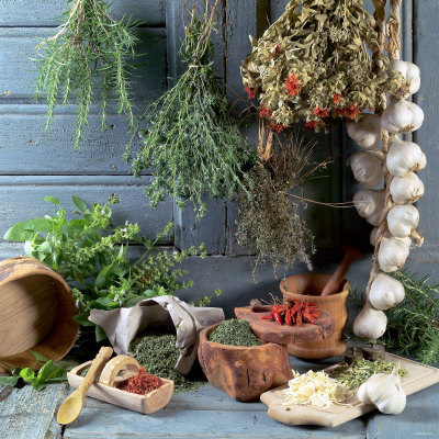 Still Life: Drying Herbs and Spices Photographic Print