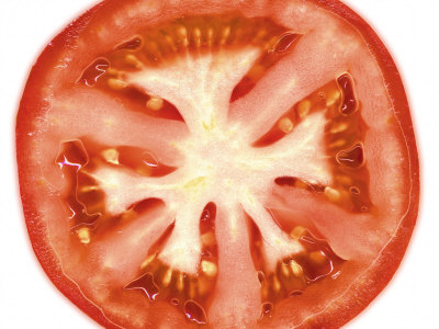 Tomato Slice Photographic Print by Steven Morris