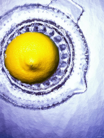 A Lemon Half on a Juicer Photographic Print by Wolfgang Usbeck
