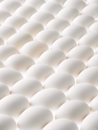 White Eggs, Lying on Their Sides, Filling the Picture Photographic Print by Klaus Arras