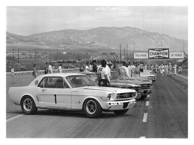 1966 Riverside SCCA Trans-Am Race Giclee Print