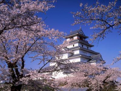 Tsurugajo Castle Photographic Print