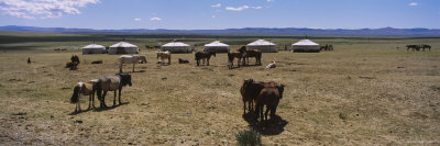 Horses and Yurts in a Field, Independent Mongolia Photographic Print by  Panoramic Images