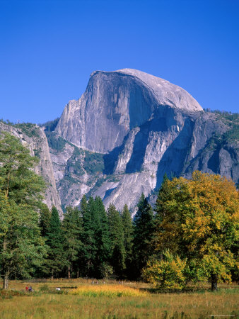 Yosemite National Park, Half Dome and Autumn Leaves, California, USA Photographic Print by Steve Vidler