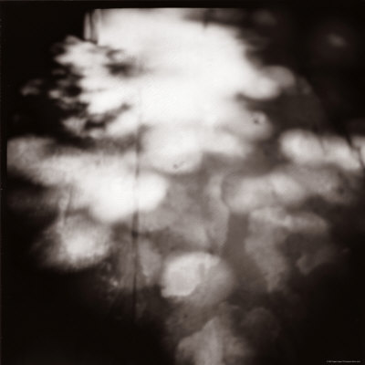 After Lunch, no. 1 Photographic Print by Edoardo Pasero