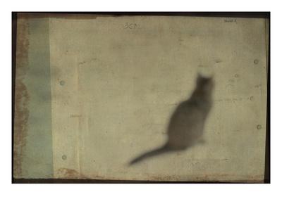 Blurred Cat Sitting Photographic Print by Mia Friedrich