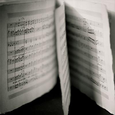 Detail of Page Music Photographic Print by Edoardo Pasero
