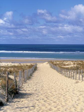 Cape Ferret, Basin d'Arcachon, Gironde, Aquitaine, France 写真プリント : ダグ・ピアソン