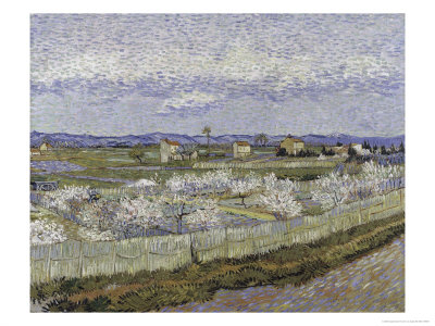 La Crau with Peach Trees in Bloom Giclee Print by Vincent van Gogh