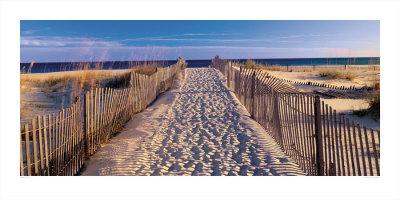 Pathway to the Beach Art by Joseph Sohm