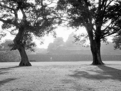 Sunrise Over Kumamoto-Jo Castle Photographic Print by Walter Bibikow