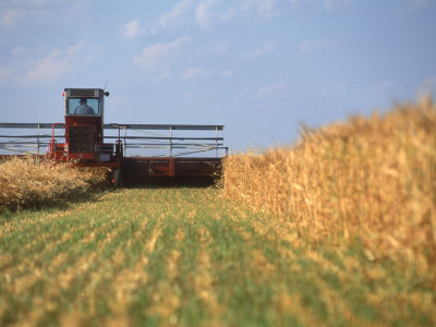 Combine in Field Photographic Print by Kent Dufault