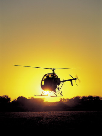 Helicopter with Sun Setting Photographic Print by Amy And Chuck Wiley/wales