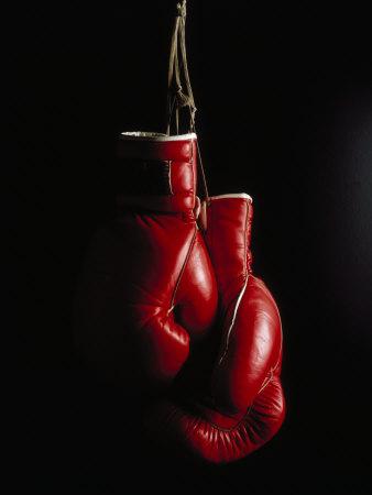 Hängande boxningshandskar Fotoprint av Ernie Friedlander