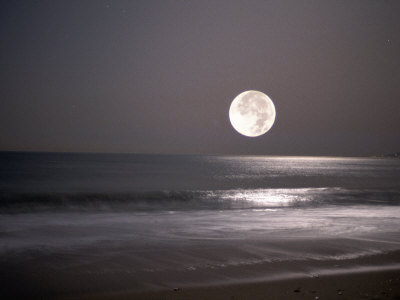 Full Moon Photographic Print by Mitch Diamond