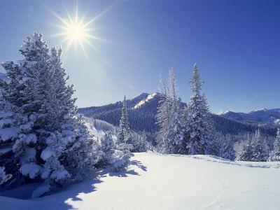 Sunlight on Fresh Snow, Wasatch Mt. Range, UT Photographic Print by Kyle Krause
