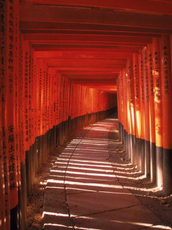 Fushimi-Inari Taisha Shrine, Japan Photographic Print
