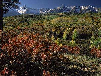 Sneffels Range in Fall, San Juan Mountains, CO Photographic Print by Gail Dohrmann