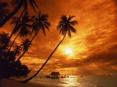 Sunset at Pigeon Point, Tobago, Caribbean Fotografisk tryk