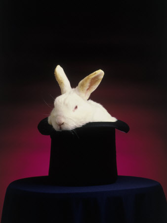 Magician's Rabbit in Hat Photographic Print by Kent Dufault
