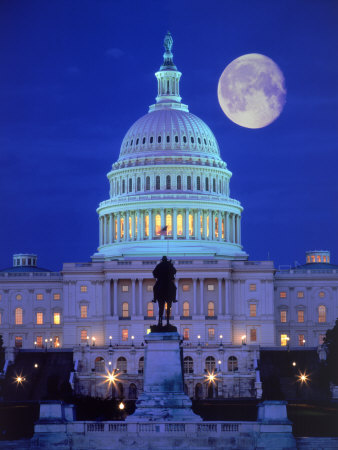 The White House US Capitol Building, Washington, DC things to see in Washington D.C. photo poster by Terry Why
