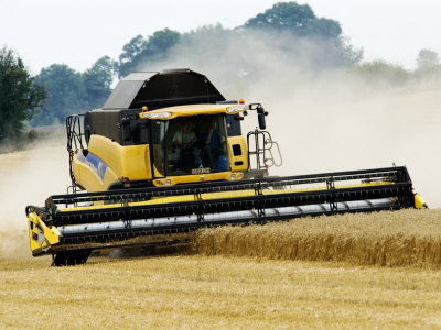 Yellow New Holland Combine Harvester Harvesting Wheat Field, UK ...