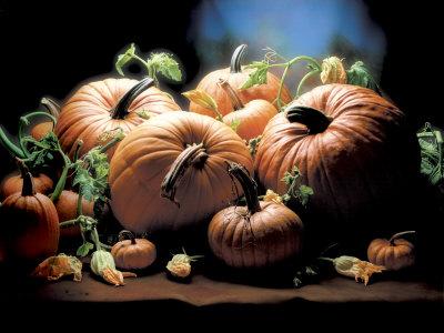 Pumpkins Photographic Print by  ATU Studios