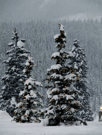 Fresh Snowfall at the Chateau Lake Louise Photographic Print by Richard Nowitz
