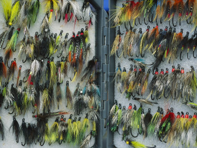A Tackle Box Full of Colorful Flies Photographic Print by Bill Curtsinger