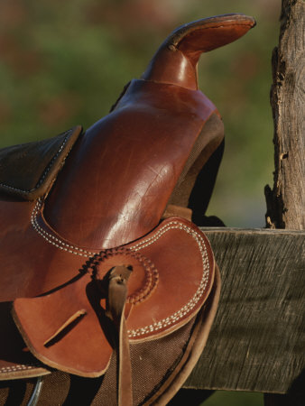 Western Riding Saddle Photographic Print by Michael Melford