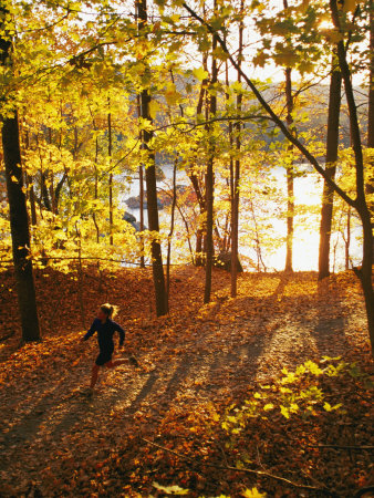 A Woman Jogs Through a Wooded Area in Low Sunlight Photographic Print
