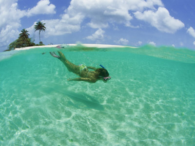 A Woman Snorkels in the Clear Blue Sea Photographic Print by Barry Tessman