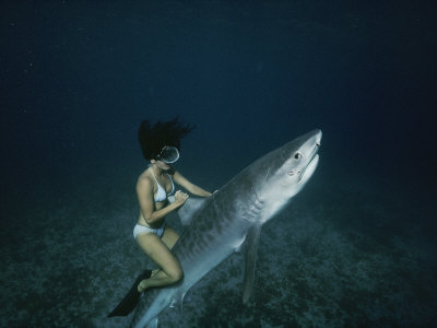 A Woman Rides a Shark Photographic Print by Nick Caloyianis