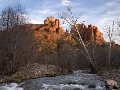 Scenic View of Red Rock Crossing near Sedona Fotografisk tryk