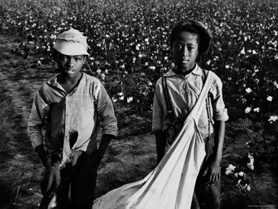 African American Children - Are Cotton Pickers Pulling Sacks Along Behind Them as They Pick Cotton Photographic Print by Ben Shahn