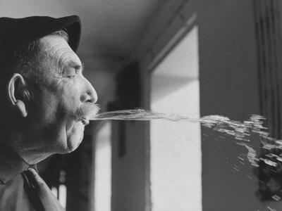 Wine Cellar Master and Taster Spitting Wine Photographic Print by Carlo Bavagnoli