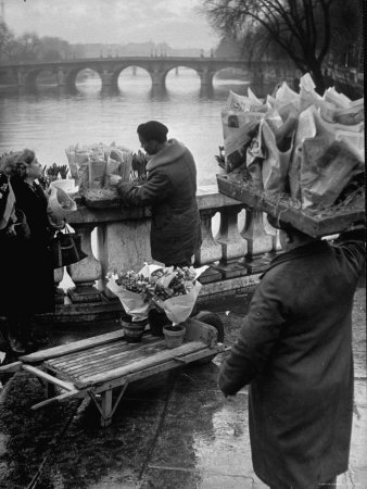 Parisian Flower Vendor at Work Stocking His Stall on the Seine with the Pont Neuf in the Background Photographic Print by Ed Clark