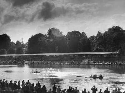 Rowers Competing in Rowing Event on Thames River Photographic Print by Ed Clark