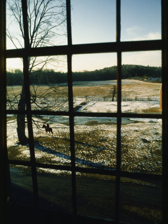 View Looking out Through a Window at a Horseback Rider Photographic Print by Sam Abell